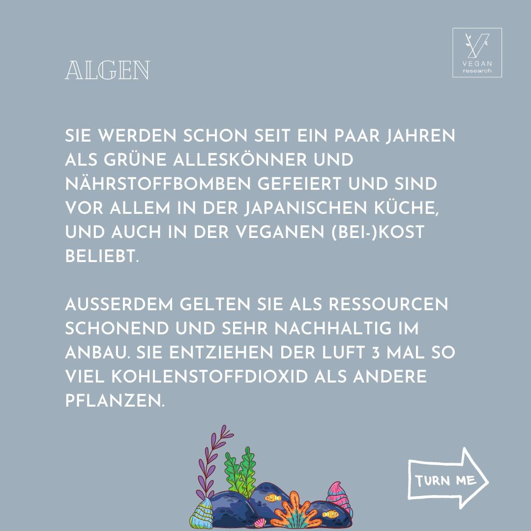 Algen 2