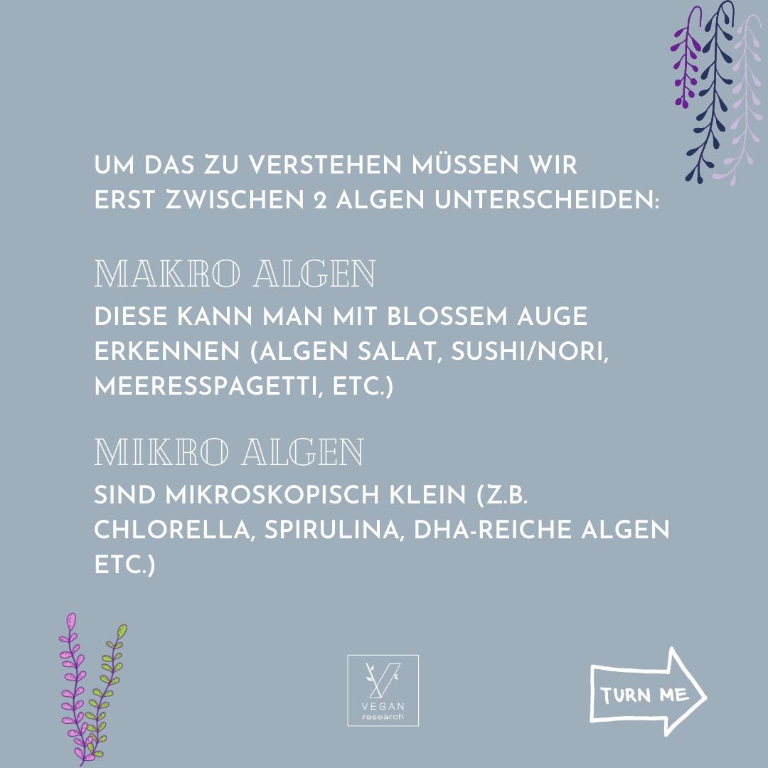 Algen 4