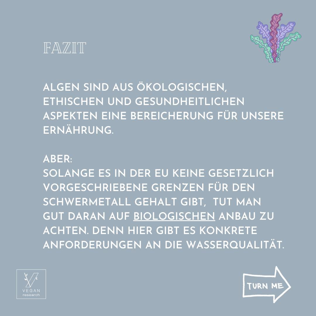 Algen 7